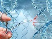 华大基因交出首份年报数据,仍需证明成长性