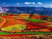 新疆到底有多美?连一座桥都成了景点,吸引无数游人争