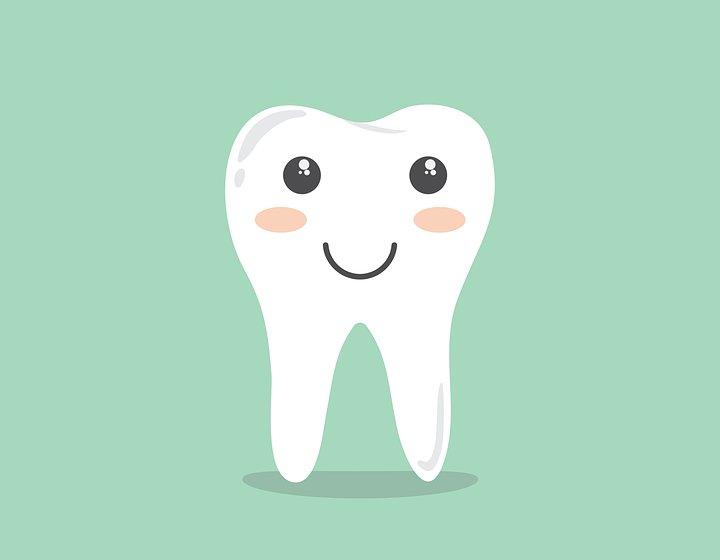 动物头牙齿手工
