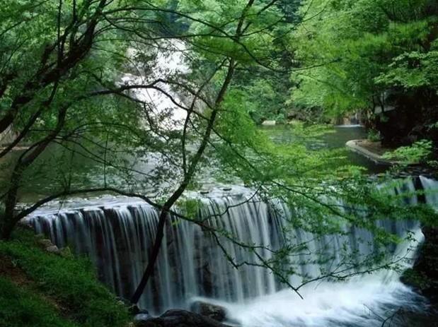 游览集奇石怪树,香花瑶草,溪流瀑布于一体的长生谷生态旅游区