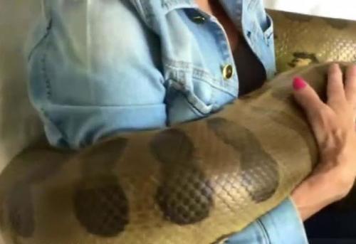 女子养了条大蟒蛇,想拍视频放到网上炫耀,不料却发生意外!