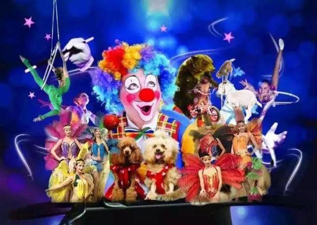 动物表演作为马戏中小朋友们喜爱的内容,在儿童节期间,大象,黑熊,骏马