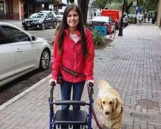 狗狗带着瘫痪的主人上学,学校为狗颁发了证书,还为它穿上学士服