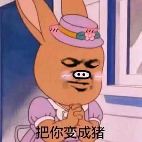 QQ聊天让人笑出声的有用:来呀,打我呀,我表情挠猫脖子后脚包动态表情图片