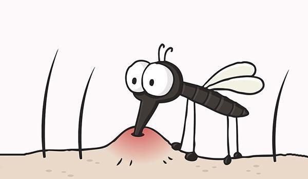 为何蚊子更偏爱咬O型血的人?蚊子真的可以识别血型吗?