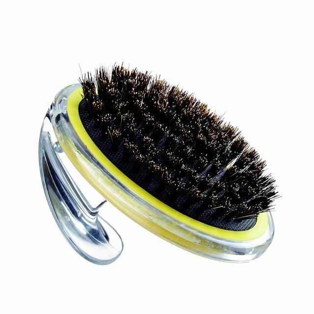 狗狗一刷牙和梳毛就想溜,怎么让它不怕刷子?3个方法让它不逃避
