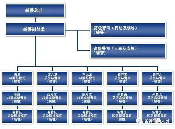 组织架构:辅警和正规警员的组织架构基本一致,也设置总监和警司.
