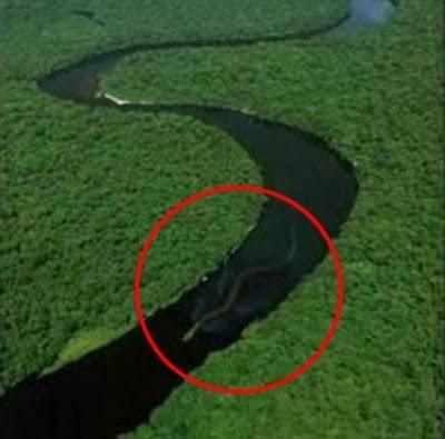 未确认生物体之纳布神秘巨蛇