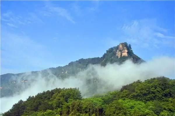 重庆周边这些免费森林氧吧,爬山吸氧洗肺去!一天打来回!