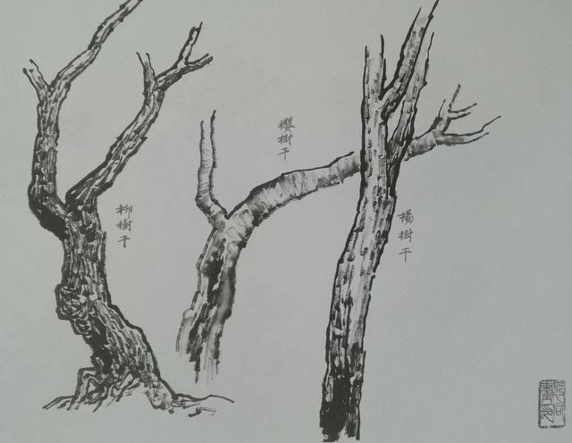 国画课堂|带你三步学会山水画中树枝的画法