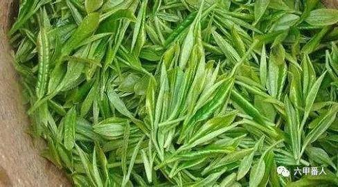 中国十大名茶有哪些说法?传统名茶和新茶种有哪些?