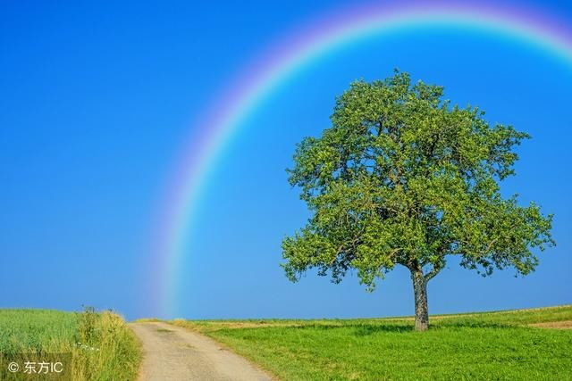 路是走出来的,不经历风雨怎能见彩虹
