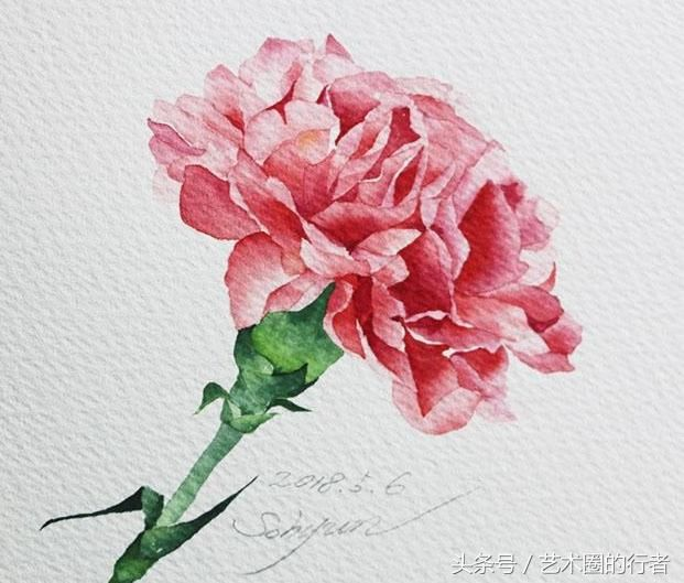 适合初学者临摹的水彩花卉分享