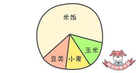 饮食规律矢量图
