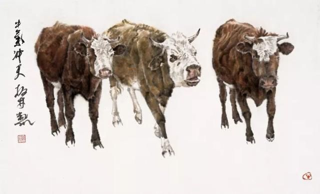 画牛的素描步骤
