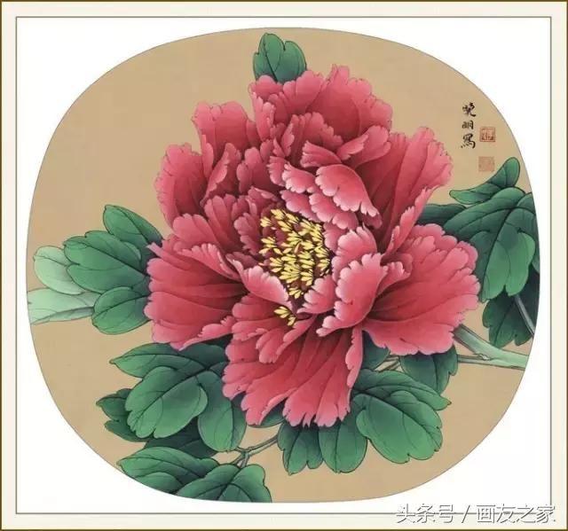 李晓明工笔牡丹步骤画法,赞不绝口