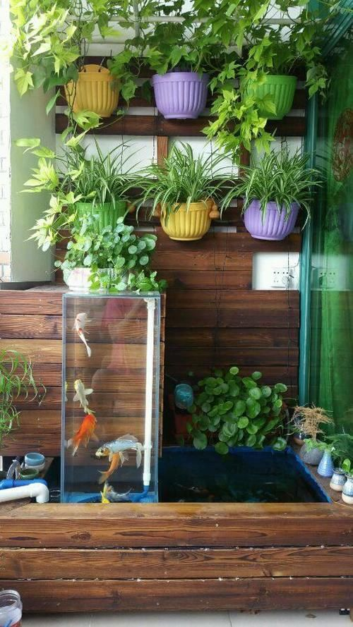 阳台diy简易鱼池,用来养锦鲤或金鱼妥妥的!