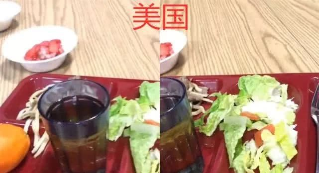 同样是食堂饭,美国VS德国VS日本,看到中国:阿姨,错怪你了