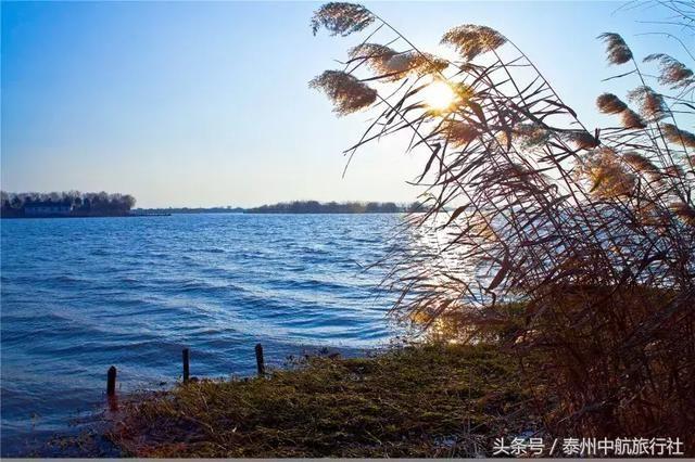 「溱湖風景區游覽路線」 中國溱湖濕地科普館→濕地體驗園→濕地迷宮