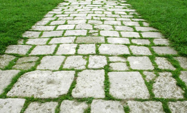 2、 各种砖材 在庭院设计中,我们更常用的是红棕色的地砖,散发出温暖人心的色调,适合温馨的田园风格庭院,在英国乡村风格庭院中最常见。一般品种有红砖、烧结砖、水泥砖、陶土砖。红砖质地较脆,因此应用不多,但是在一些田园风格的花园中,或者预算少的情况下会是比较物美价廉的选择。水泥砖应用的最普遍,其中有些是透水砖,雨后不积水。有良好的环保性。水泥砖十分耐用,价格也较低。紫砂粘土砖、烧结砖的效果最好但也最贵。另外,也可以选择一些陶土砖,价格也比较贵,但色彩和质感都比普通红砖要好得多。 由于每块砖的大小、形状统一,