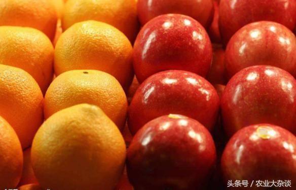 2017年云南水果出口额以16.1亿美元独占鳌头占全国出口总额约3成