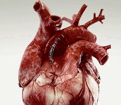 手术刀上的以色列:如何用一个只有2.5厘米的3D打印心脏,彻底拯救心衰患者,让人起死回生?
