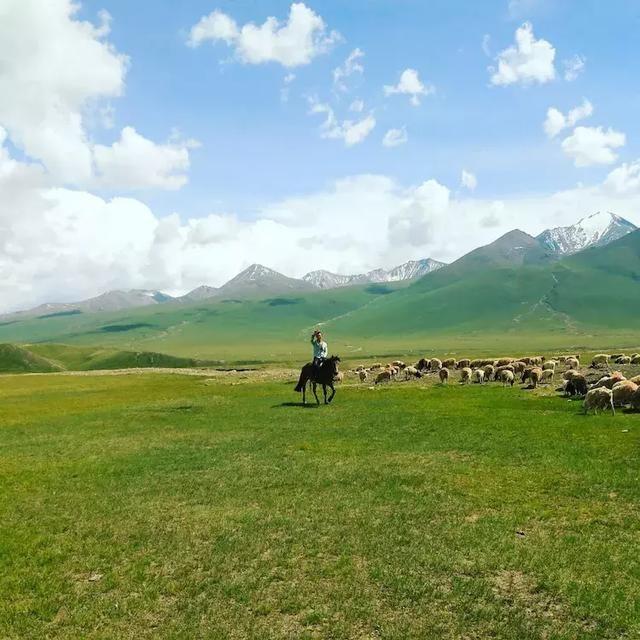 旅游 正文   路边一蒙古族大哥正在放牧,看到我立刻热情的互相打起了