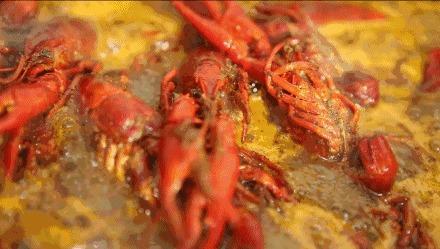 最爱吃小龙虾的城市 单笔平均消费303,人人都是 好吃佬