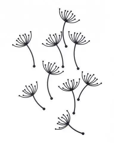 素描丨各种植物简笔画大全