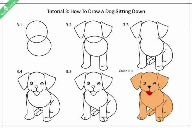儿童简笔画:九个小狗的画法教程,附上超超超详细的步骤