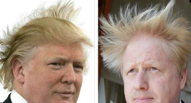 美驻英大使:约翰逊特朗普领导风格相同,英美关系将轰动一时