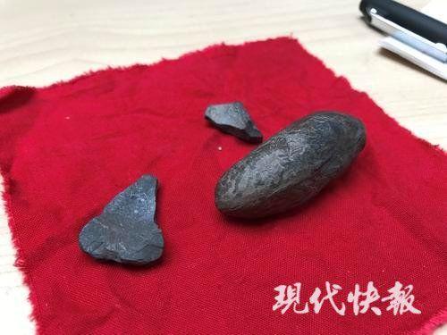 [热点]连云港一对父子捧着两块石头找专家鉴定:这是恐龙蛋吗?