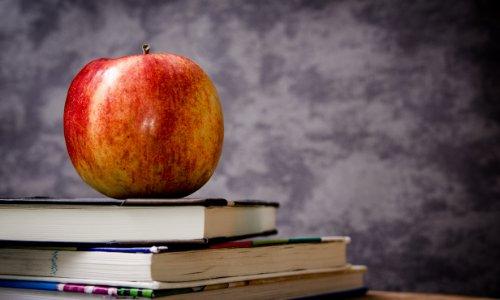 2019上半年教师资格证面试成绩查询时间预计