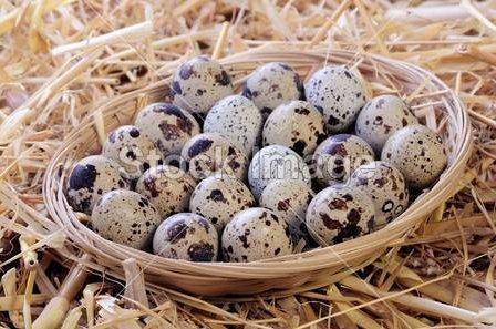 鹌鹑蛋的营养价值!常吃鹌鹑蛋能补血美容护肤美肤清热解毒