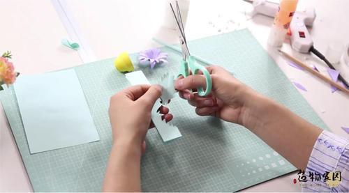 (6)沿着长方形的一侧,剪出锯齿形状的树叶,如图所示