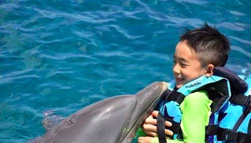 "Jasper游泳与海豚""共舞"" 小甜椒眉眼弯弯开心露齿"