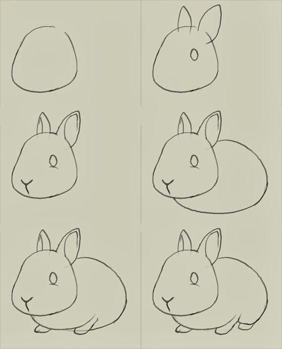 可爱的动物简笔画教程,适合跟孩子们一起画,快来收藏哦!