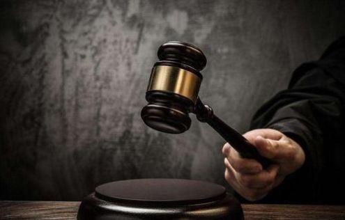 刑事精神病鉴定意见审查与质证
