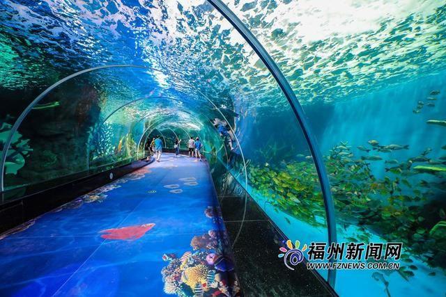 """在""""山里看海""""福州永泰欧乐堡海洋世界国庆试营业图片"""