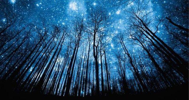 走夜路请放声歌唱,有一个夜晚我曾听过最美的歌声