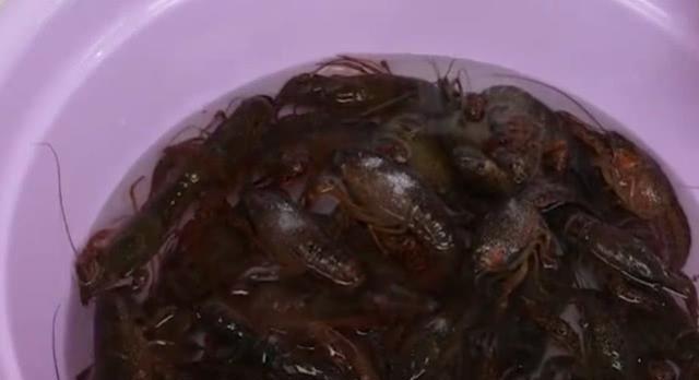 靓妹花30元买一盆小龙虾,往洗衣机里放,打开一看不淡定了