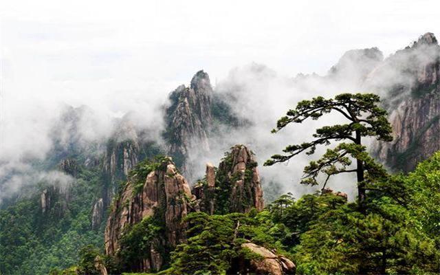 她是中國十大風景名勝中唯一的山岳風景區,作為中國山之代表,黃山集
