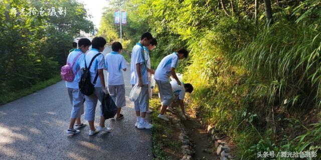 暑期,本溪十二中,初中生的社學習學好表把實踐怎樣學習的初中圖片