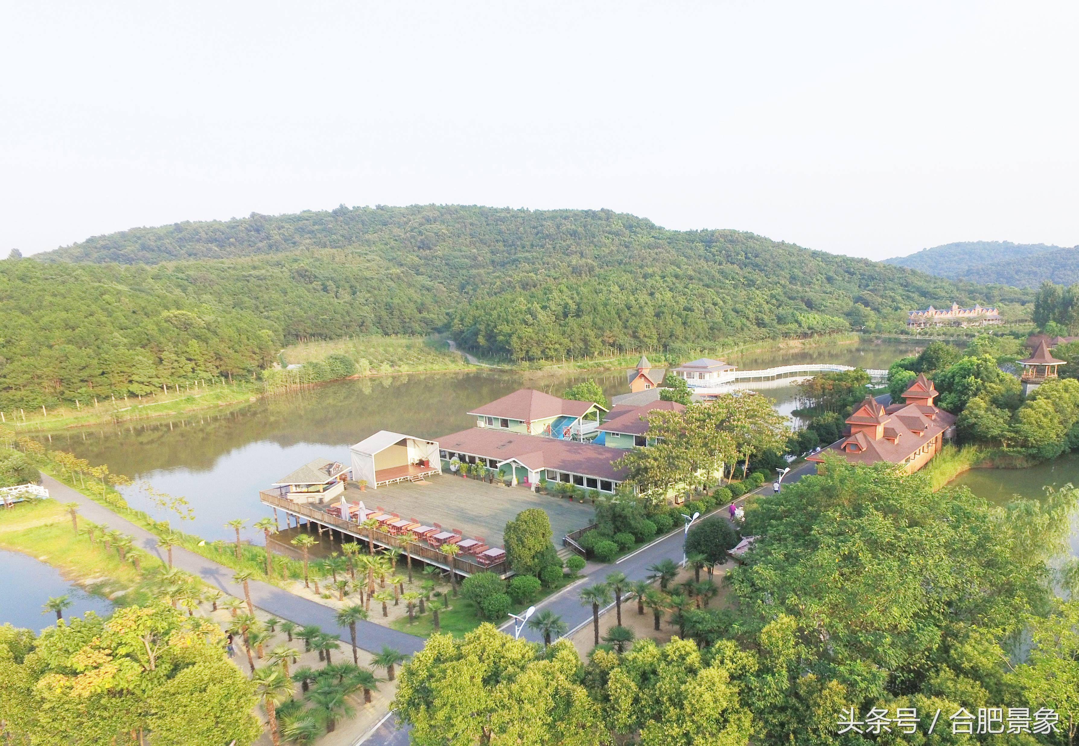 旅游 正文  安徽紫蓬山国家森林公园地处为大别山余脉,它东对道士山