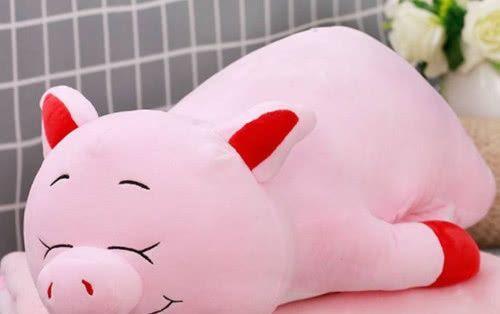 情感测试:选择一款你喜欢的抱枕,测出你是一个自私的人吗