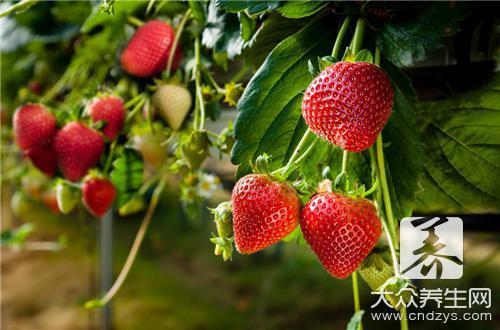 心形草莓切法有哪些情趣用品广州店荔湾区图片