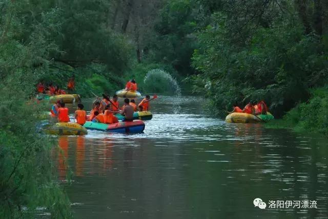 优惠政策:凭嵩县身份证和此链接免伊河漂流门票 门票包含:森林漂流图片