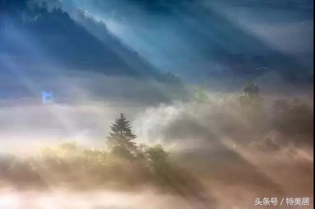 光与影:我是丁达尔,期待每个清晨,都跟你来说一声早安