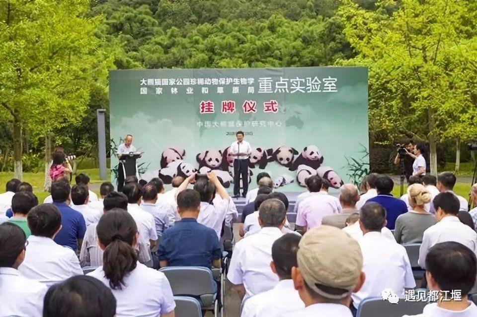 如今,大熊猫国家公园珍稀动物保护生物学国家林业和草原局重点实验室