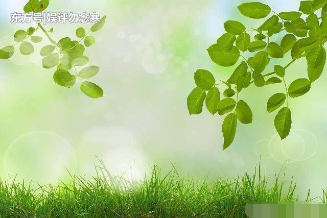 背景 壁纸 绿色 绿叶 设计 矢量 矢量图 树叶 素材 植物 桌面 640_427